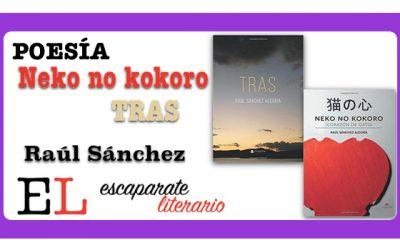 Reseña: Neko no kokoro y Tras (Raúl Sánchez)