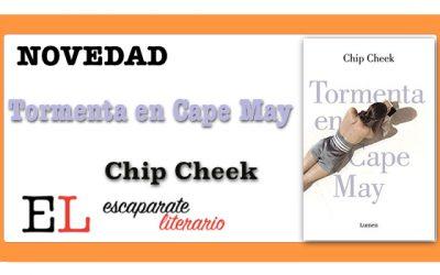 Tormenta en Cape May (Chip Cheek)