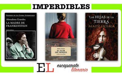 Recomendaciones para leer en el verano de 2020: novela histórica